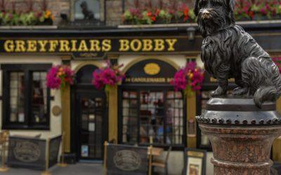 L'amore tra uno Skye Terrier e il suo padrone  può andare oltre la morte? La Storia di Bobby